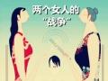 中国式婆媳