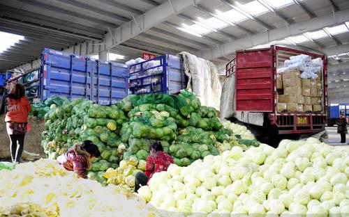 蔬菜水果批发市场建什么冷库好 建多大的冷库合适