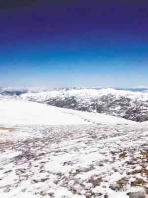 香格里拉降下一场雪 网络截图