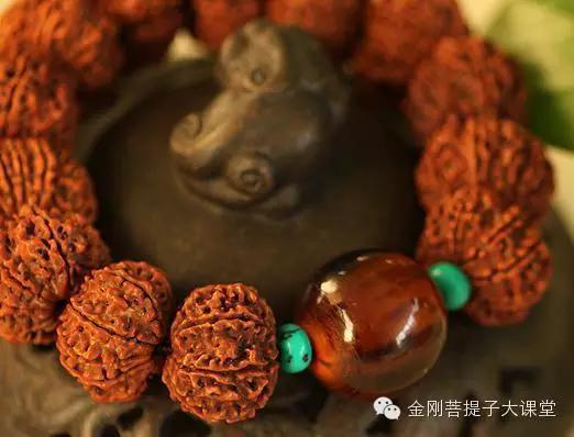 十二瓣金刚�y�Z�_四级品:一瓣和十二瓣的金刚菩提子每颗的价格大约在1000元以上; 五级
