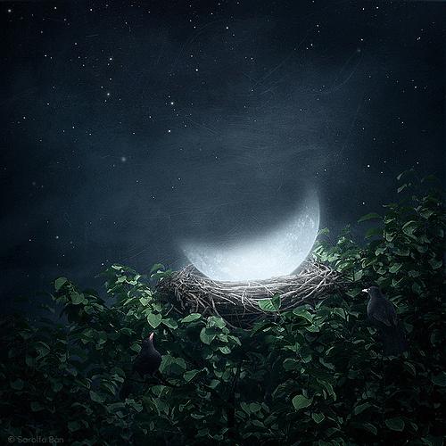 """并利用太阳与月亮的行运规律,制 新月在古籍中被称为""""朔"""",新月"""