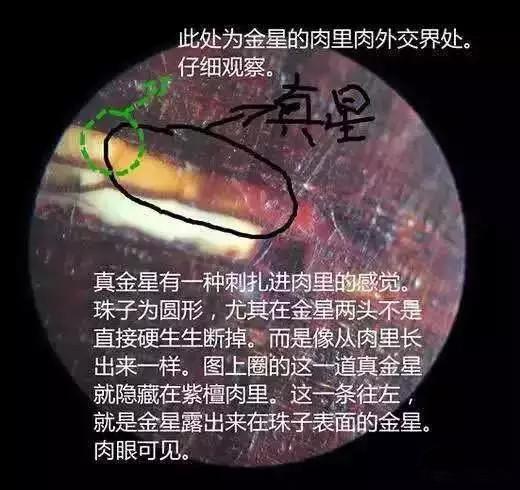 小叶紫檀真假金星鉴别就是这么简单图片