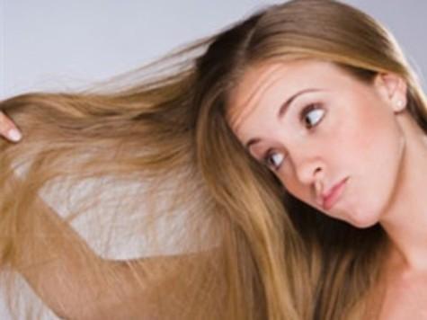 你掉头发了表情包qq分享展示图片