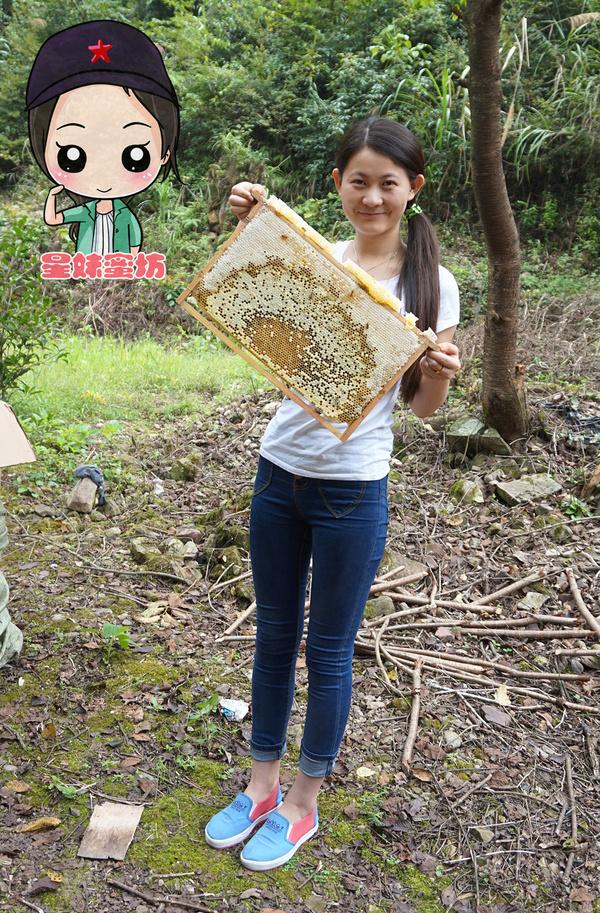 星妹蜜坊:微商卖蜂蜜、星妹和她的甜蜜事