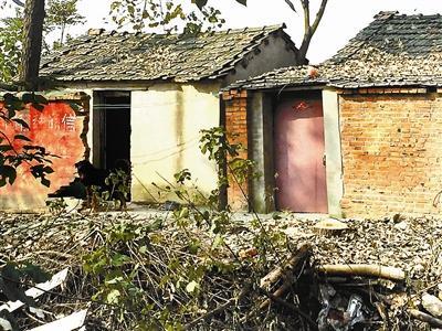 受伤男子李娟男朋友张宏宇的养狗场,抢救职员证明,他们在此左近接到李娟