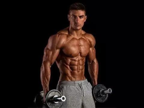 任何一个健身模特或是健美运动员都尝试过各种各样的饮食方法来在减脂