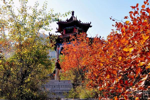 石家庄平山紫云山,户外专场赏红叶