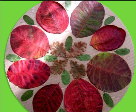 树叶织法图解步骤