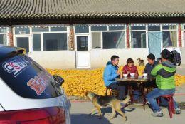 CCTV-4《远方的家》在农民左崇香的北芪菇合作社里采访