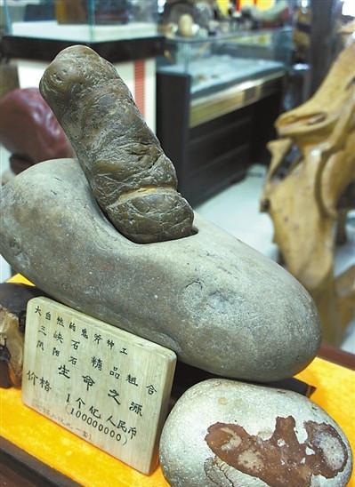 """捡块石头价值一亿 似性器官取名""""生命之源"""""""