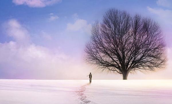 冬天到了,春天还会远吗