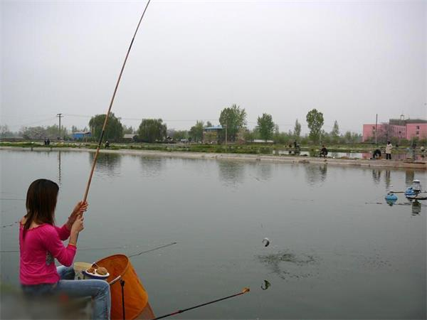 一个表情的钓鱼故事庄周搞笑女孩包图片