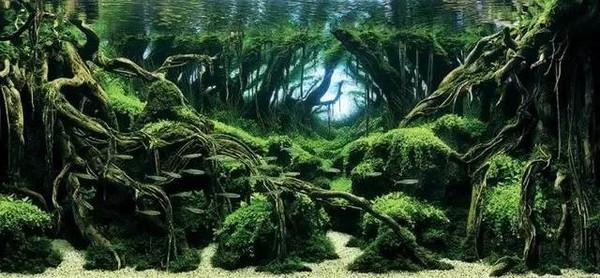 森林小动物造景
