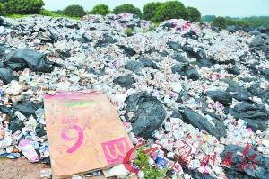 黄埔区九龙镇凤尾村后山藏有废物场。