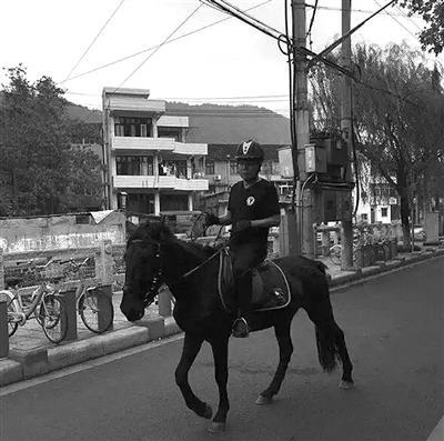 男子大半夜市中心骑黑马逆行 被宝马撞飞(图)