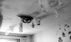 居民楼漏雨8年业主被迫租房:下雨屋内变水帘洞