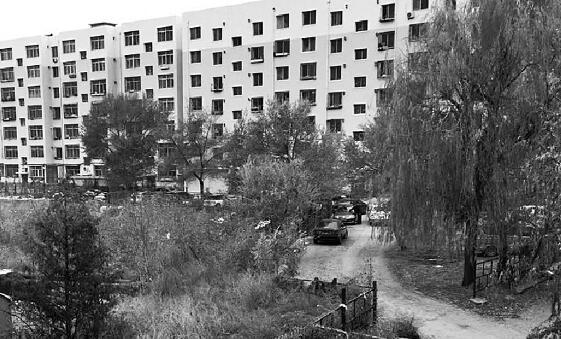 画面中的楼房为体校的家属楼,画面右侧的楼下空地为争议土地