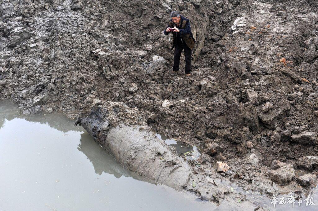 11日下午4点30分,记者赶到崇州公议乡疑似乌木的发觉地,很多乡民仍在围观评论。记者在现场看到,本来种树的田里,被挖出一个长约30米,宽约3米,广度近2米的大坑,四周还堆满挖出不久的新泥,坑边还留有被挖出的3块连起来5米摆布的疑似乌木,大坑底另有一根更大号的还未彻底挖出。