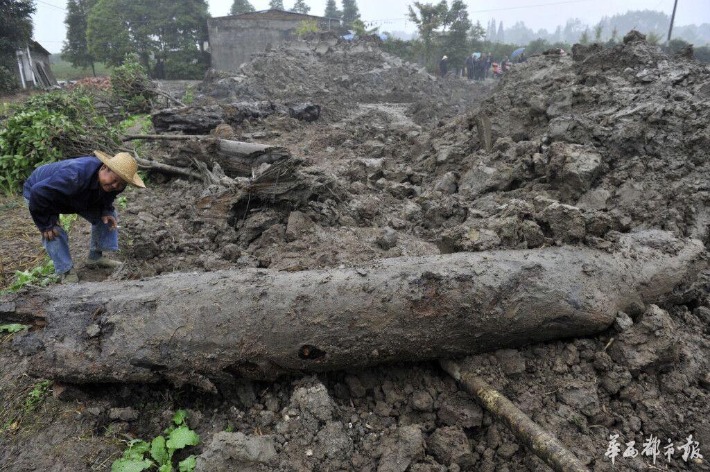 也有乡民称,在清晨6点摆布,看到有装载机载着货色分开,但因为其时天气较暗,不克不及肯定那是挖出的木头。