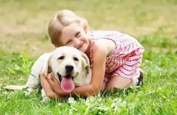 人和动物生的孩子_人和狗都是社交动物,接触其它狗狗对宠物有好处,可以带它去宠物公园玩