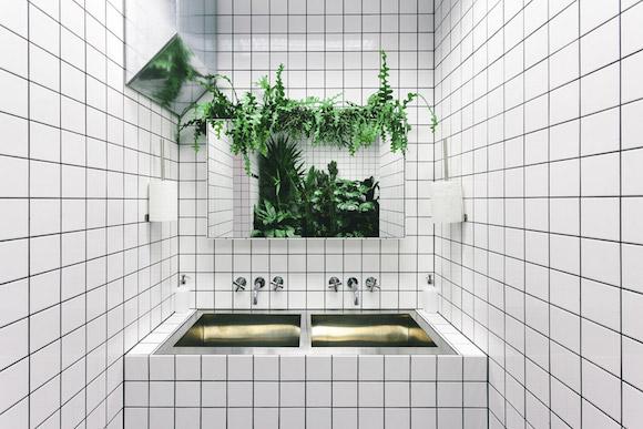 """厕所附近的""""森林""""图片"""