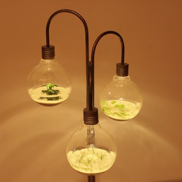 [新奇设计]灯泡里养植物盆栽灯具