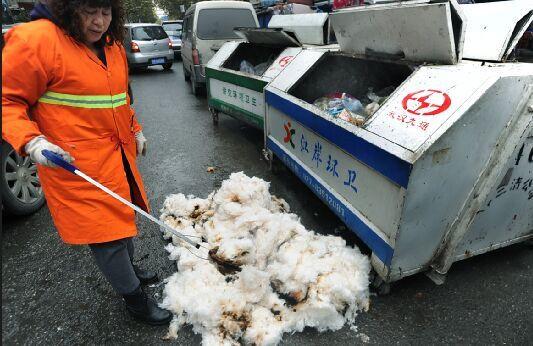 农民街头卖棉花 协管员当街烧掉