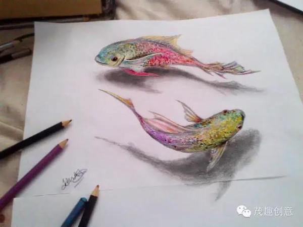 南非小女孩用铅笔画3d动物!太逼真了