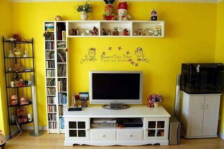 小户型电视墙装修效果图 简明实景图片