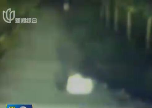 上海一男子醉酒躺马路中间 抱野狗呼呼大睡