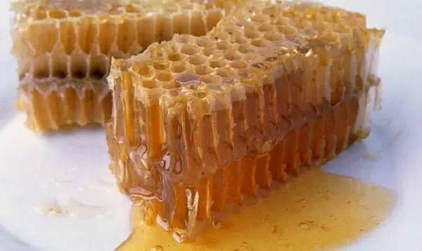 蜜蜂用数学忙些什么?