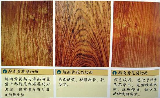 【越南黄花梨】如何区分越南黄花梨与海南黄花