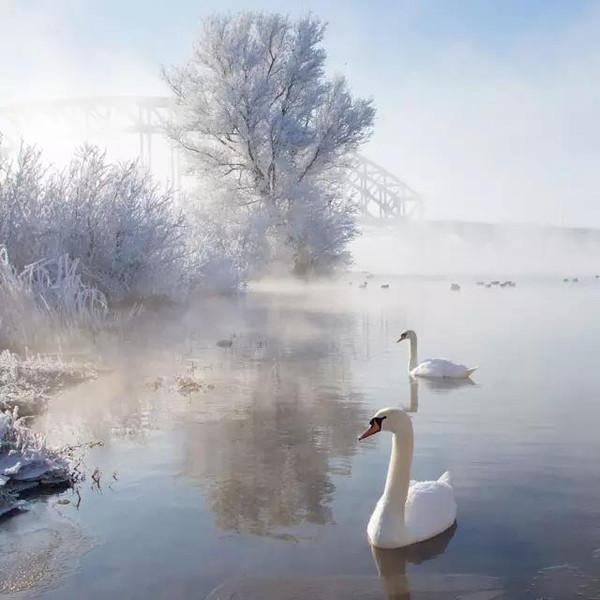 最寒冷的冬天_最寒冷的冬天的介绍