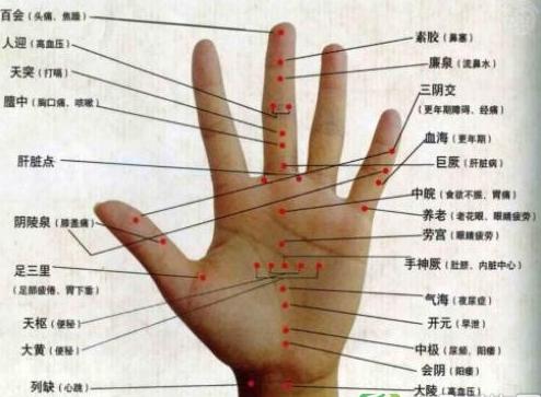 右手腕学位图解大全
