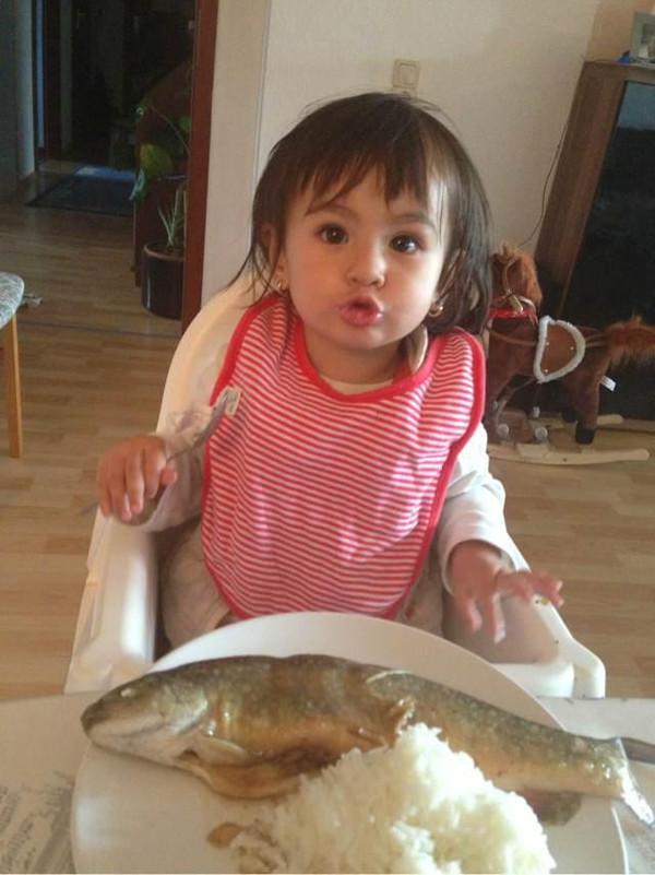 丝线每天吃的鱼原来毒素高!_降价b站宝宝牵排骨图片
