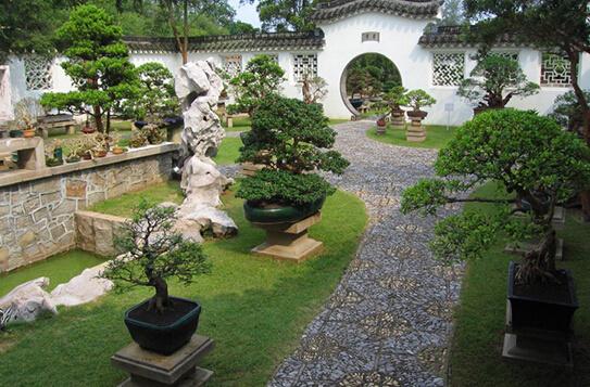 欧式庭院和鲜花图片