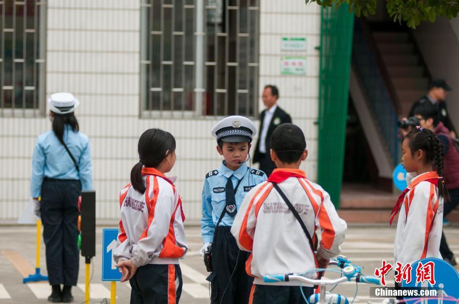 【小学教师学习交通安全心得体会】