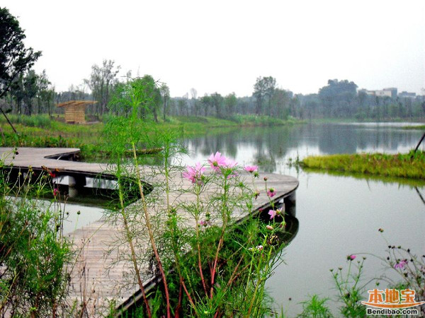 成都-白鹭湾湿地公园,位于成都市区东南部锦江环城生态区(锦江区