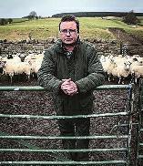 """据《逐日邮报》11月29日报导,英国农夫罗斯·哈钦森为了证实""""我羊是我羊"""",折腾了一年多,共破费1.5万英镑(约合公民币14.4万元),总算大功乐成。"""