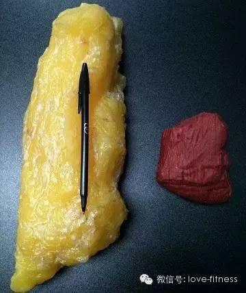 产后12天能瘦几斤_产后恢复产后如何瘦肚子_7天清水断食能瘦多少