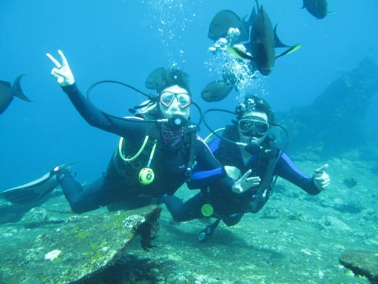 图说:在巴厘岛潜水成为国人热中的旅行名目。收集图
