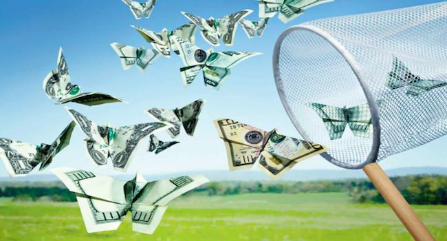 保本基金新生态(组图),保本基金收益最新排名,