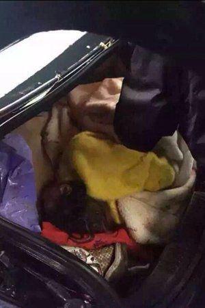 尸身被藏尸轿车后备箱。图像来自收集