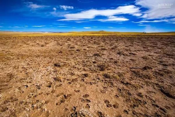 行咖丨穿越羌塘无人区,真男儿心无西藏 二图片 116141 600x400