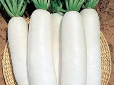 如果女生说,白菜萝卜丁,你就是我的菜怎么回答插图