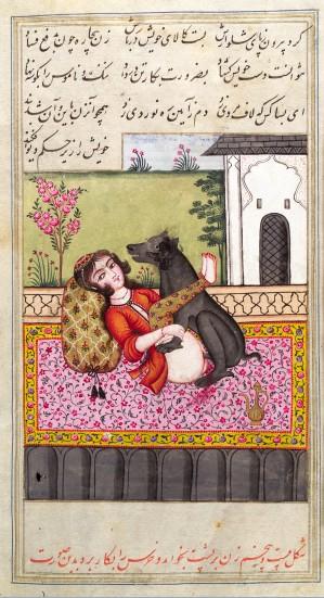 伊朗人与兽_化身天鹅攻陷公主勒达……   在人类历史中盛行生殖崇拜的阶段,人与兽