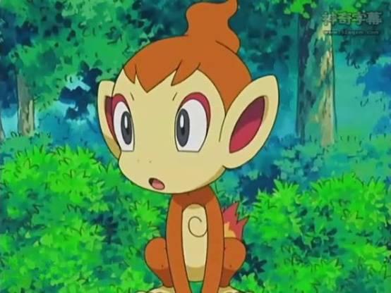 孙悟空之外 动画片里还有哪些猴?