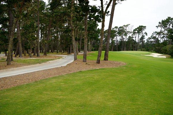 图解:木屑松针构成的荒芜区(球道自左向右的倾斜)