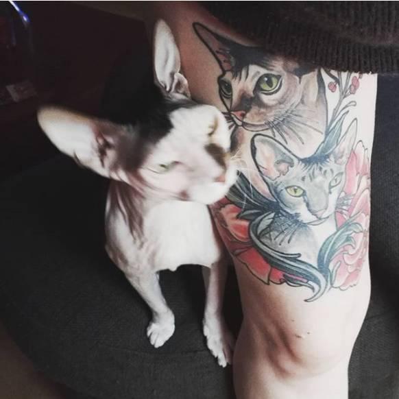 除了是纹身师的爱宠之外,斯芬克斯猫还让很多人爱上了ta,甘愿成为它