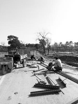 植物园自驾区的小山坡旁,几名工人正在开工